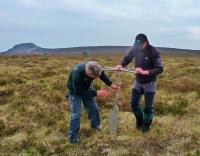 Extracting Peat samples on Moss Grieve as part of an ecological survey.jpg