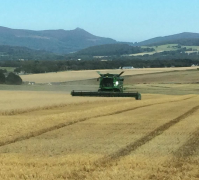 bennachie-harvest-sept16.png